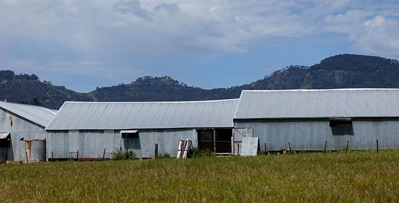 Woolshed Exhibition